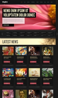 Website voor portfolio of reviews